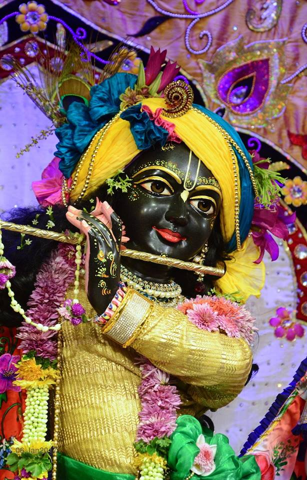 ISKCON GEV Deity Darshan 06 Jan 2017 (23)
