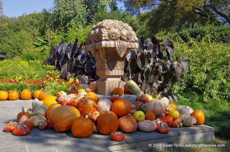 10-26-14 Dallas Arboretum - _IGP4336.JPG