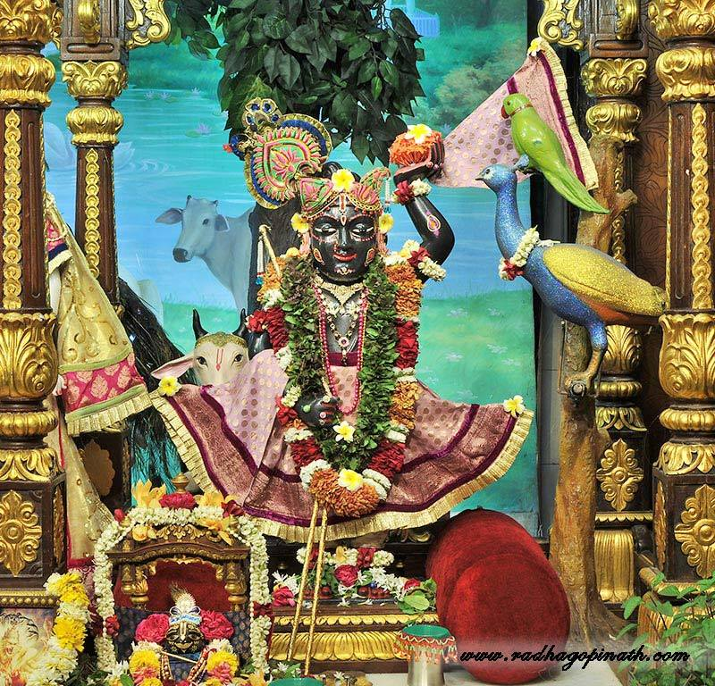 ISKCON Chowpatty Deity Darshan 14 Dec 2015 (3)