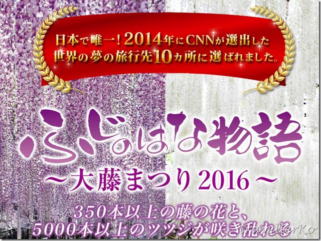 在最美的季節遇見足利紫籐花卉公園:門票交通攻略實況(上)02