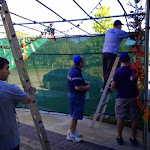 menfolk attaching the sukkah lighting.jpg