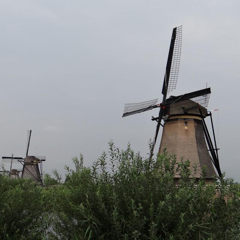 Day_6_Kinderdijk_41.JPG