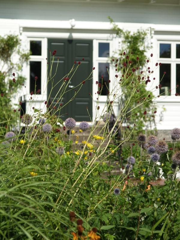 2017-08-11 Møll, hagen (44)