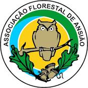 Ass Florestal Ansiao.jpg