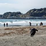 2014 Japan - Dag 7 - jordi-DSC_0166.JPG