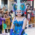 CarnavaldeNavalmoral2015_313.jpg