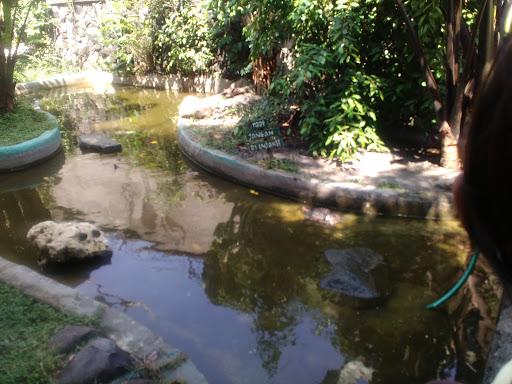 Taman Reptil Balekambang
