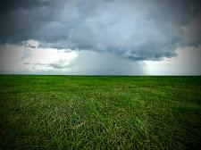 Storm on the floodplains at Carmor, NT