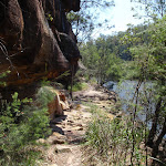 Warrimoo Track and Cowan Creek (118147)