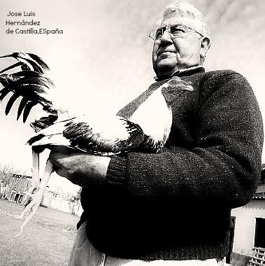 Jose Luis Hernandez  de Castilla.jpg