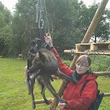 Survival voor Baas en Hond 2012 - IMAG0737.jpg