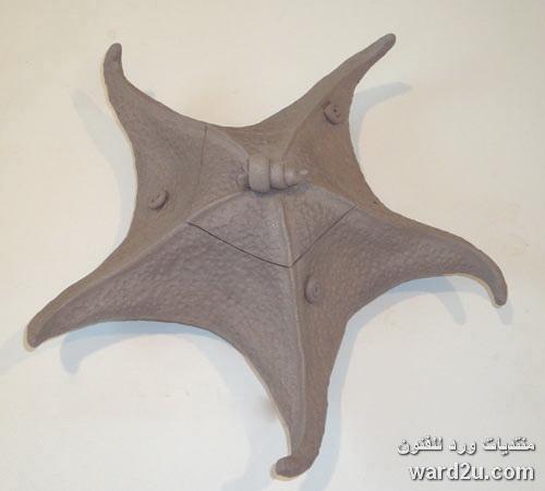 نجمة بحر مجسمة خطوات مصورة