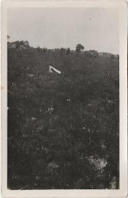 Fusilladeplaats van Dr. H.A. Thiadens, gemarkeerd met een Nederlandse vlag.