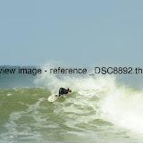 _DSC8892.thumb.jpg