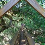 04-06-12 Myaka River State Park - IMGP9884.JPG