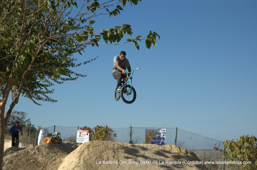 Ballena Dirt Jump BMX 2009 - BMX_09_0049.jpg