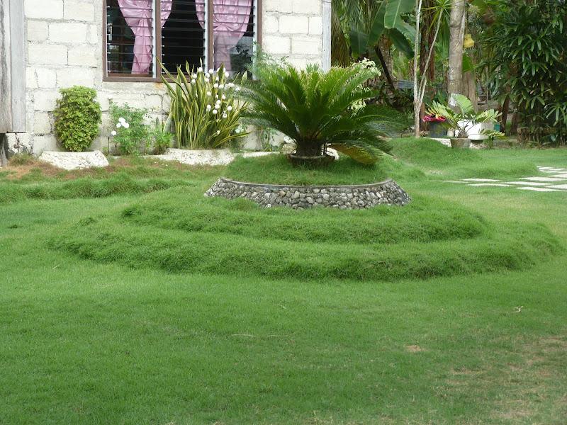Jardin manucure