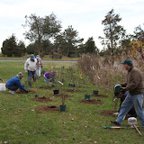 Hammo Fall Planting - Jim Murtagh - BC3G2526.jpg