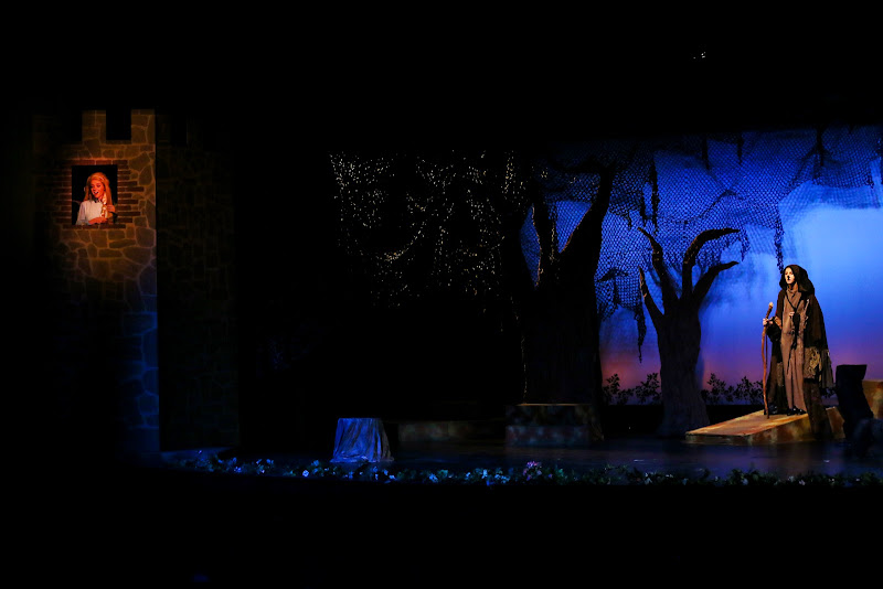 2014 Into The Woods - 39-2014%2BInto%2Bthe%2BWoods-8936.jpg