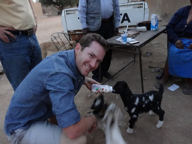 David loves the baby goats at the house next door
