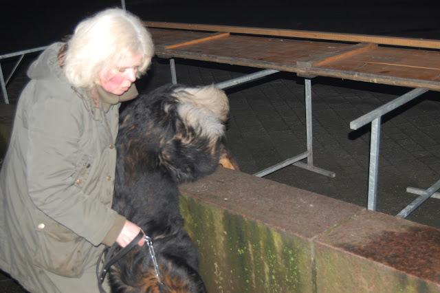 Jonge Hond centrum Emmen - 2012-04-01%2B029.JPG