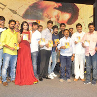 Run Movie Audio Launch Photos