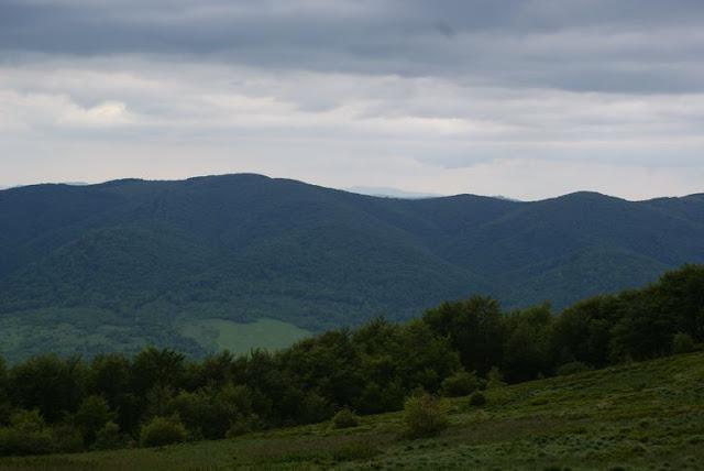 Wycieczka LO Tarnica - DSC06893_1.JPG