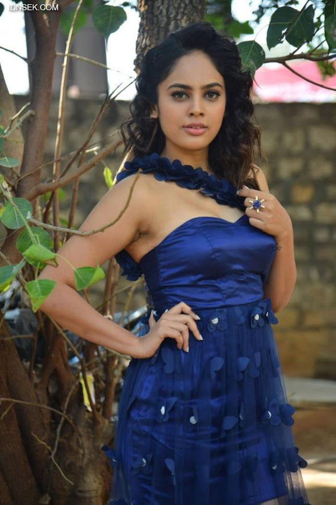 South Indian Actress Nandita Swetha In Transparent Blue Gown
