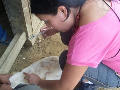 m_saritachanchamayo2010 (5)