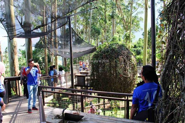 gambar cantik di dusun bambu bandung