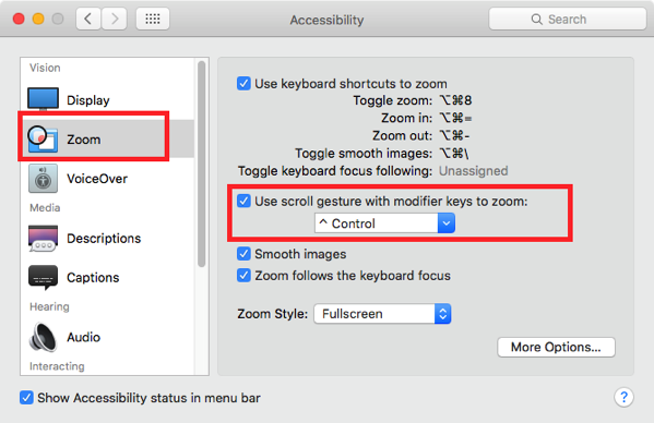 Zoom option in Accesibility pane