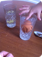 Will the egg sink or float ?