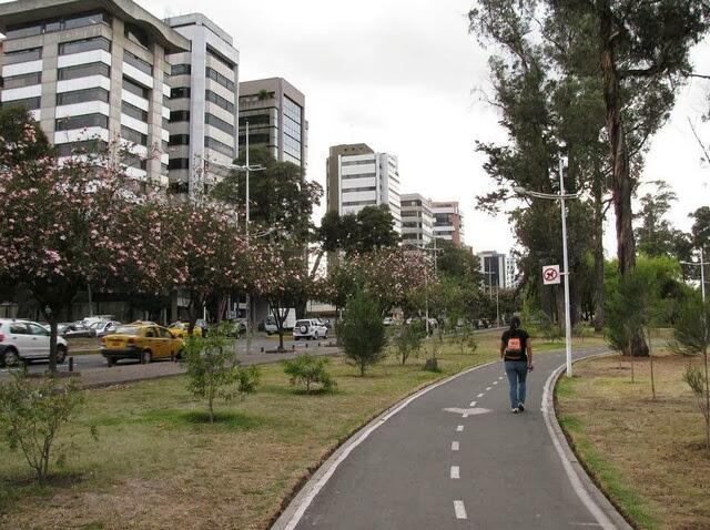 Transport jard n bot nico oasis en la ciudad for Jardin botanico contacto