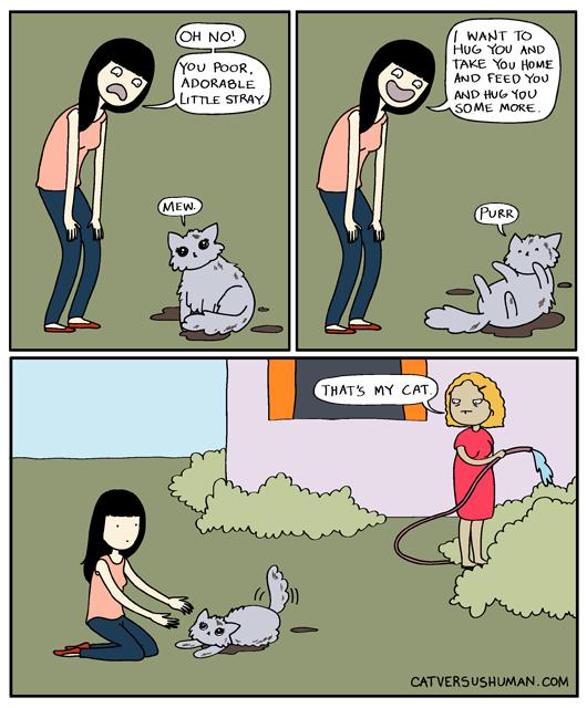 Cat vs Human - That's My Cat