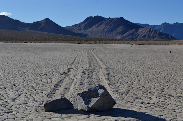 pair of rocks with tracks copying one another