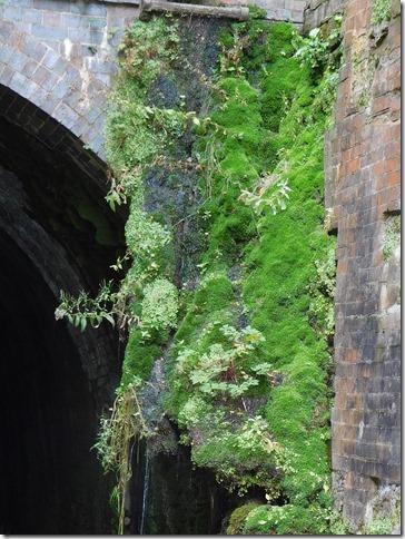 4 shrewley tunnel moss north end