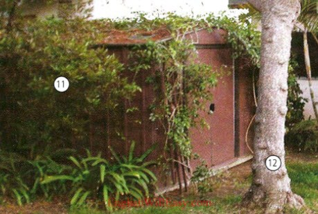 Yard Garden - Place to live - Housing - Photo Dictionary
