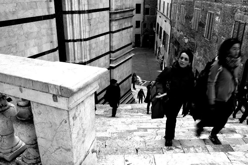 Scalinata a Siena di Andrea F