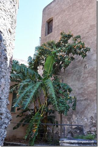 DSC_0389-Catania