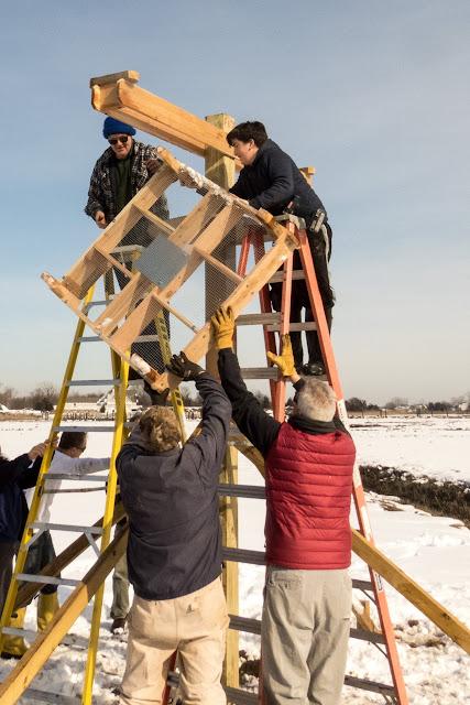 Osprey Platform, West River, Guilford, February 7, 2016 - wr16.jpg