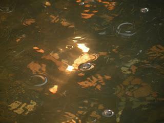 Фонтан. Мелочь в воде.