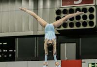 Han Balk Fantastic Gymnastics 2015-9137.jpg