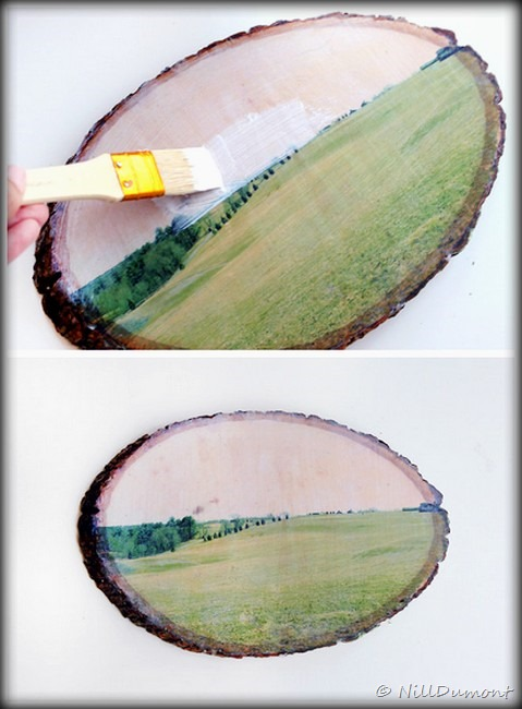 [Artesanato---Transfer-em-madeira-052]
