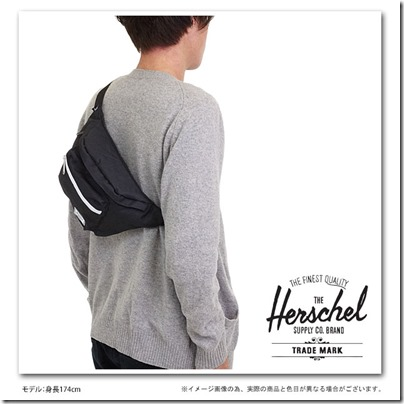 Hershel Seventeen Hip Pack 3 Liter 2