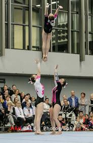 Han Balk Fantastic Gymnastics 2015-9596.jpg