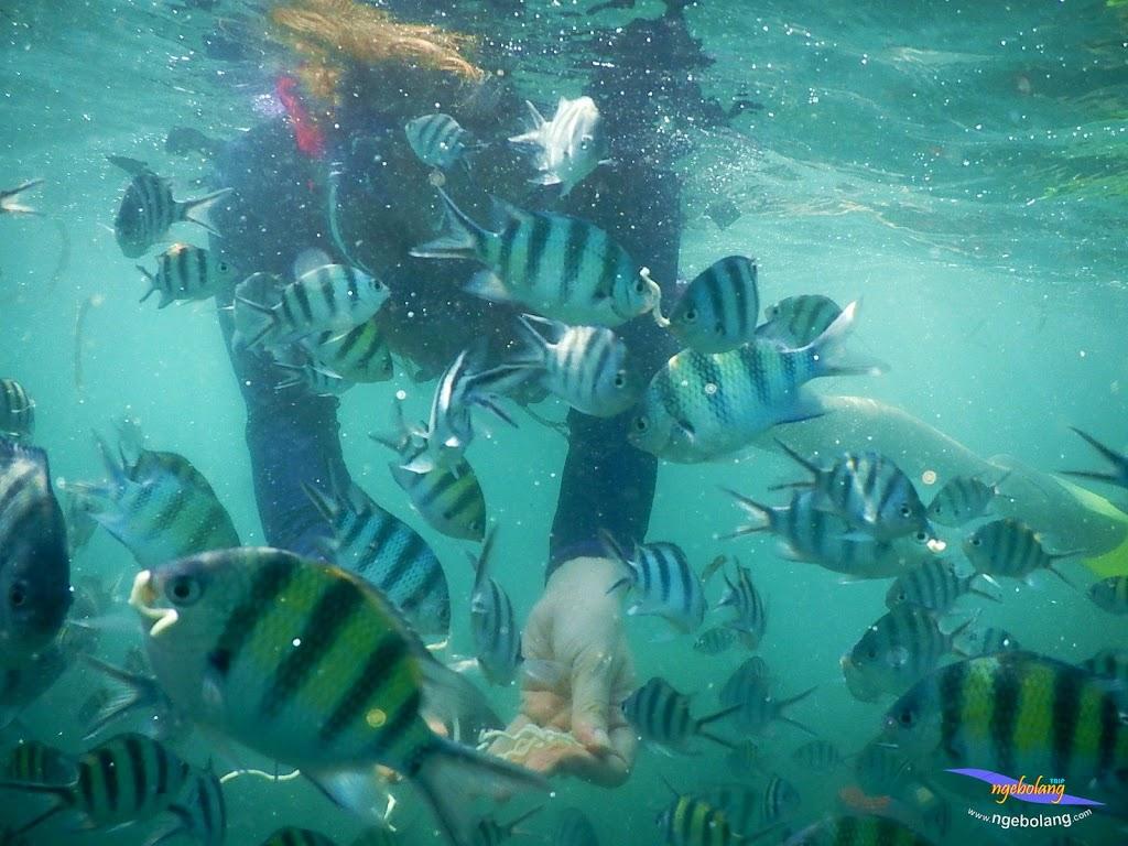 family trip pulau pari 140716 Nikon 32