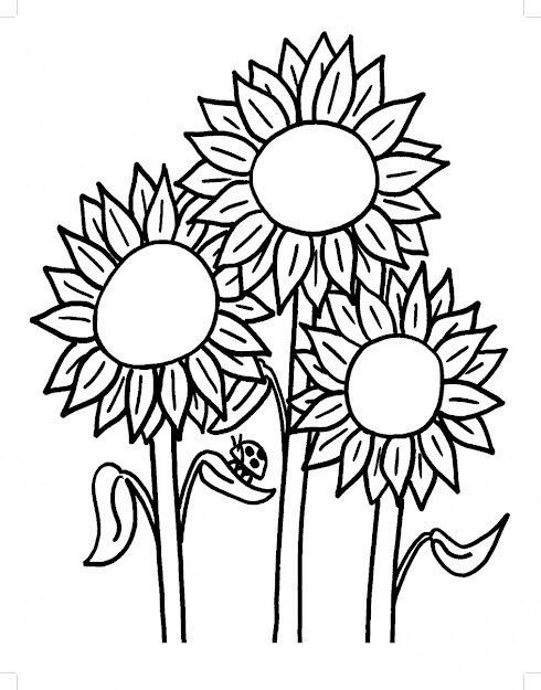 Sunflower Coloring Pages Sunflower Coloring Page  Thecoloringpage Coloring  Pages Of Animals