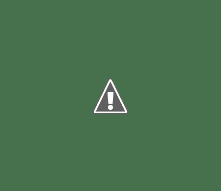 rezultate vot alegeri prezidentiale 2014 Harta votului   O țară, două Românii