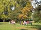 Obrázek: Den stromů 2012 002.jpg