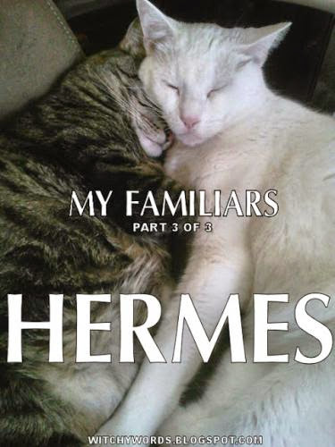 My Familiars Part 3 Of 3 Hermes